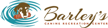 Barley's Canine Recreation Center